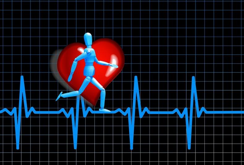 Optimale Herzfrequenz zur Fettverbrennung