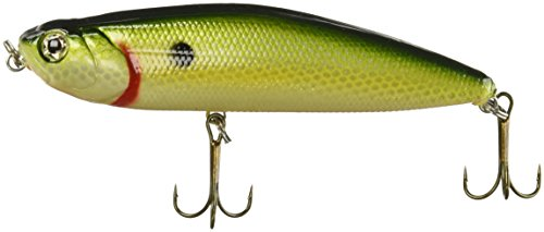 Akuna Ratt'l Top Series Topwater Köder 10,2 cm, Chattanooga Shad, Five of One Color von Akuna