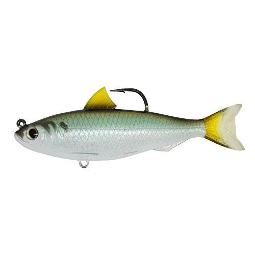 "Live Target Blueback Herring Jointed Bait Saltwater 5 1/2"" 9/0 Hook Medium/Slow Sinking Speed, Green/Bronze von Live Target"