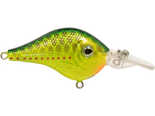 Livingston Lures 5637 Aktenvernichter 53 Copperhead von Livingston Lures