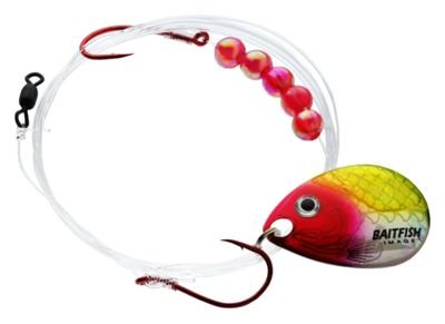 Northland Tackle rch3 – funkybuys baitfish-Image Spinner Geschirr # 4 6/SC baitfish-Image Spinner Geschirr # 4, Firetiger von Northland