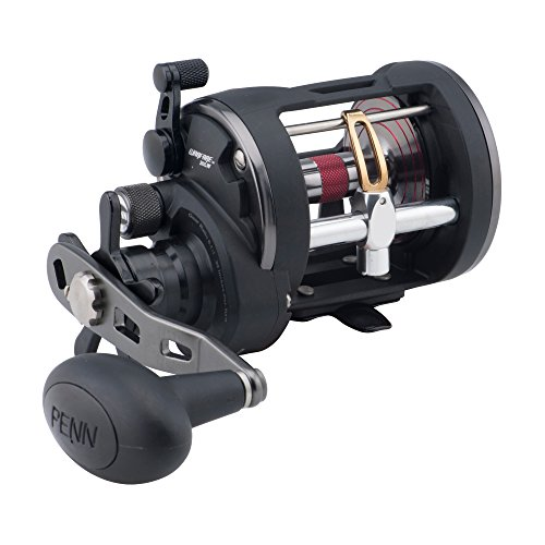 Penn Level Wind Reel war20lw, schwarz, S, WAR15LW von Penn