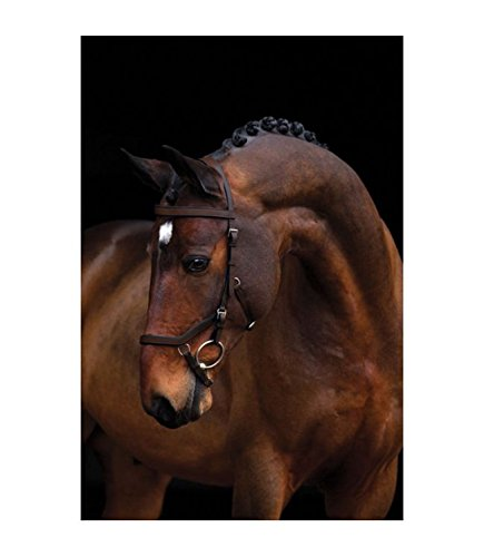 Horseware Rambo Micklem Competition Bridle von Horseware