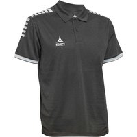 SELECT Monaco Poloshirt grau XL von Select