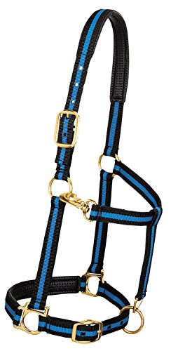 "Weaver Leather Padded Adjustable Nylon Horse Halter, Blue, 1"" Small Horse von Weaver Leather"