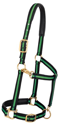 "Weaver Leather Padded Adjustable Nylon Horse Halter, Green, 1"" Small Horse von Weaver Leather"